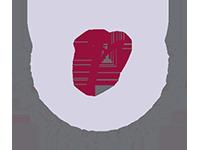 CRKBO logo kennisontwikkeling vibber academy